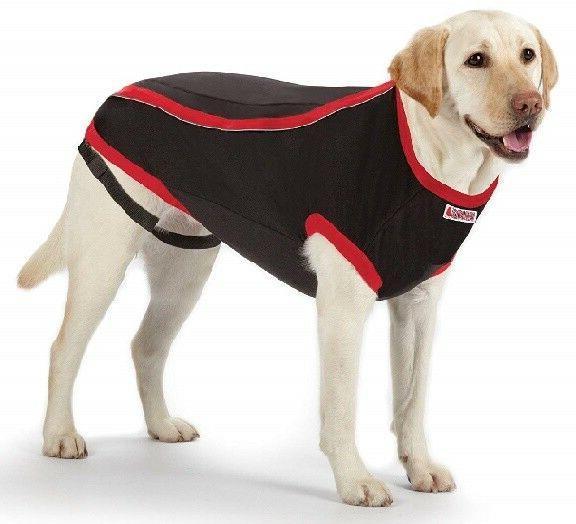 KONG Dog Anxiety - Stress Car Travel Thunder CLEARANCE
