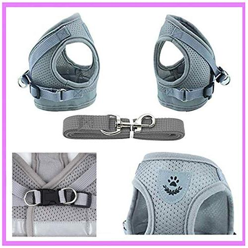 GAUTERF and Universal Harness with Set, Proof Soft Harnesses Pet Supplies