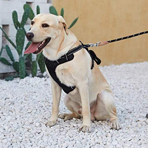 Dog Harness and Running Chest Harness with Front Harness for Large and Big Dogs