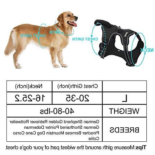 Dog for and Dog Harness Front Pet and Harness Large and Big
