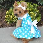 Dog HARNESS DRESS & LEASH - Blue Polka Dot - Doggie Design 2
