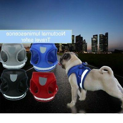 US XS-XL Cat Walking Harness Reflective Strap Vest