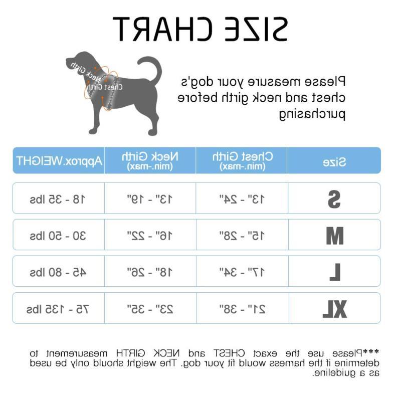 Rabbitgoo Dog Pet Adjustable 3M Reflective Oxford