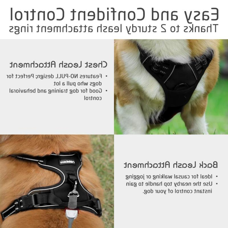 Rabbitgoo Harness No-Pull Pet Adjustable 3M M