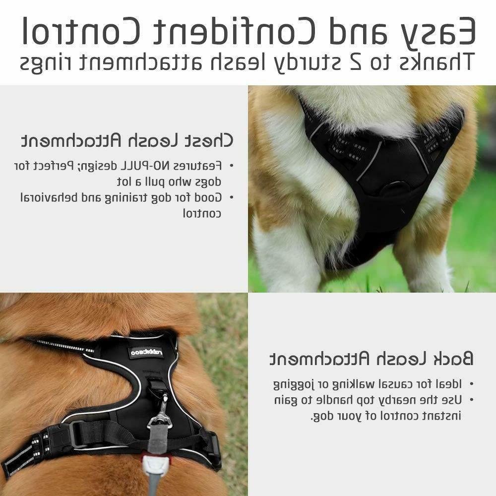 RABBITGOO Small Adjustable Dog