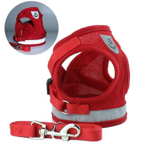 Mesh And Vest Small Dog