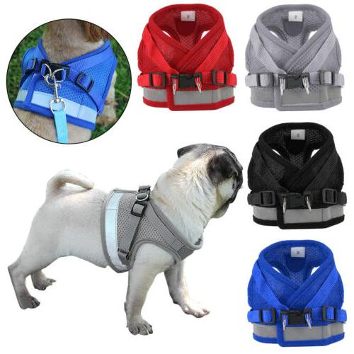 pet puppy harness breathable mesh and leash