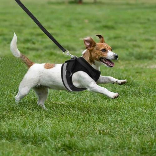 Dog Harness Nylon Mesh Puppy Harnesses Vest Leash