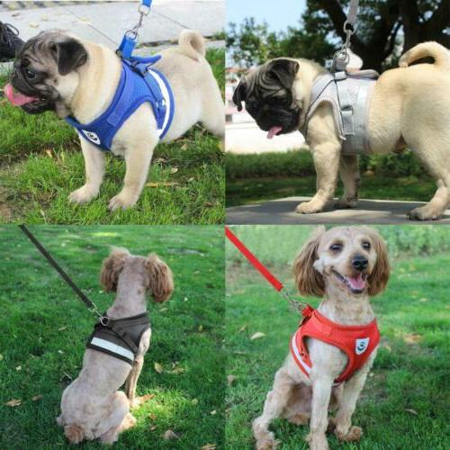 Dog Harness Pug Nylon Mesh Puppy Harnesses Leash