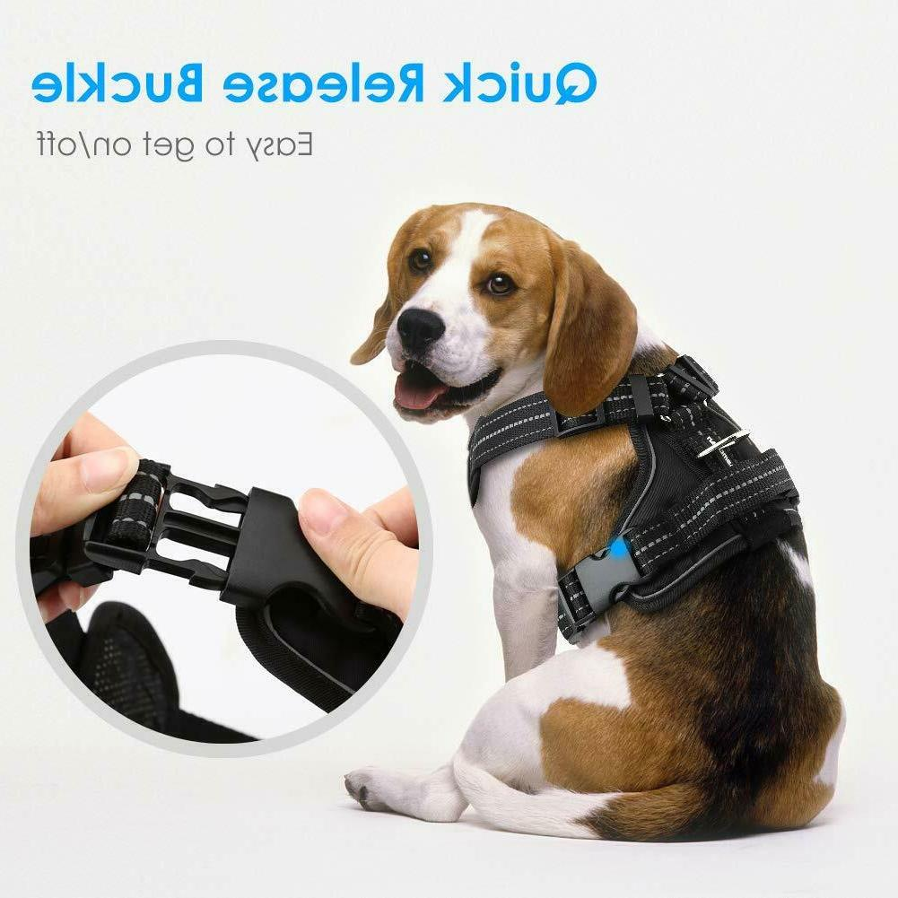 Pull Oxford Easy Control Pet
