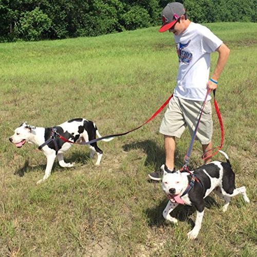 URPOWER Dog Leash Harness Adjustable Durable Set Denim for Small, Large )