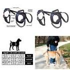 dog lifting aid mobility harness older injured