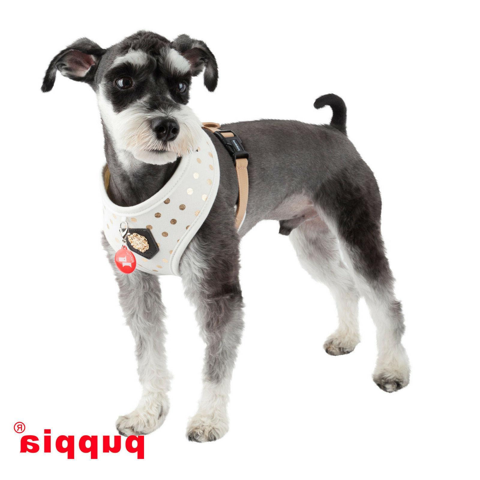 Dog Puppy Harness - Puppia - Dotty - Size