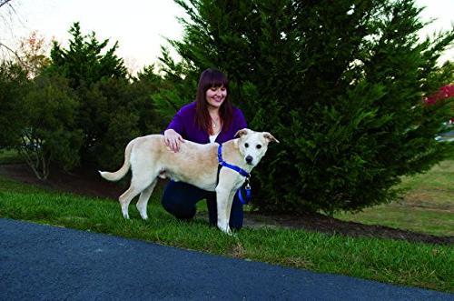 PetSafe Easy Walk Large, BLACK/SILVER