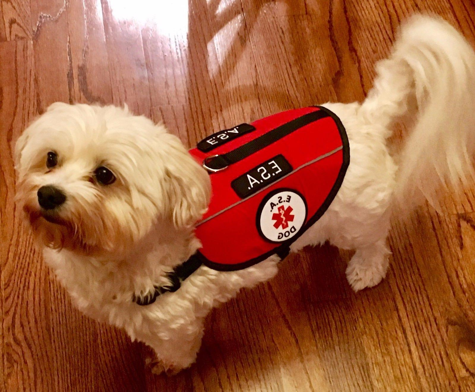 ALL ACCESS CANINE™ Emotional Support Animal ESA Service Do