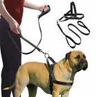 Dog Harness Fit Quick Ezydog Adjustable Custom Reflective 2