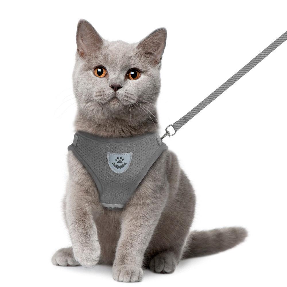<font><b>Harness</b></font> Leash Pets Kitten Clothes H