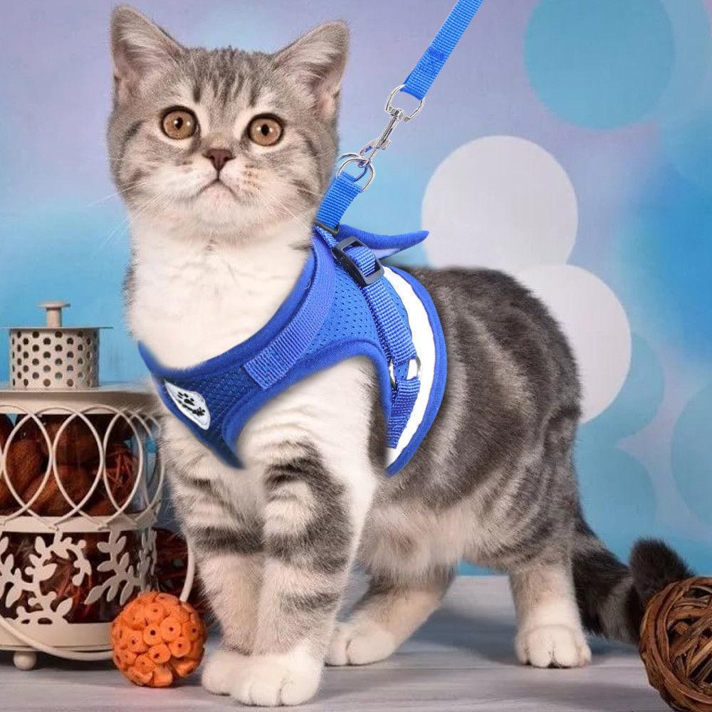 <font><b>Dog</b></font> <font><b>Cat</b></font> <font><b>Harness</b></font> Leash Pets Kitten Clothes Vest H