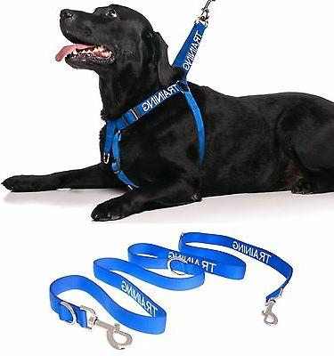 Front Clip Harness Dog Nylon Training Blue Color Coded +Hand