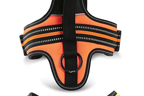Best Front Dog Harness. 3M Outdoor Pet with Colors and