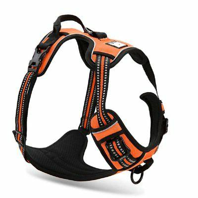front range pull dog harness