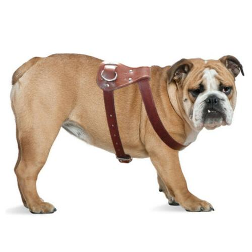 Brown Large Leather Dog Harness for No Heavy Pet Vest