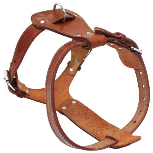 Handcraft Leather Small Large Adjustable