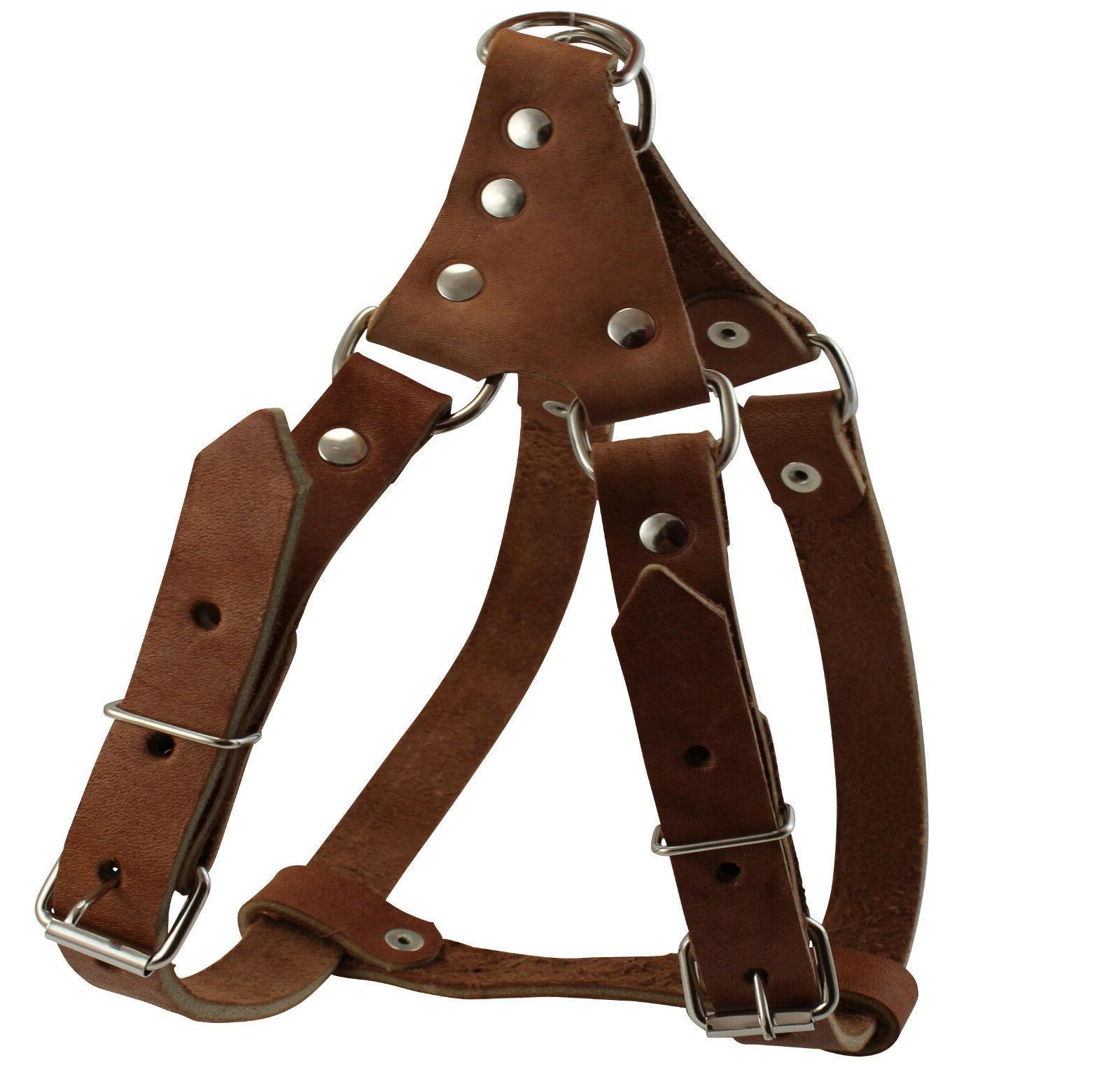 Genuine Leather Medium Dog