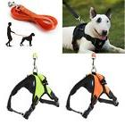 Hands Free Pet Collar Large Dog Adjustable Leashes Harness W