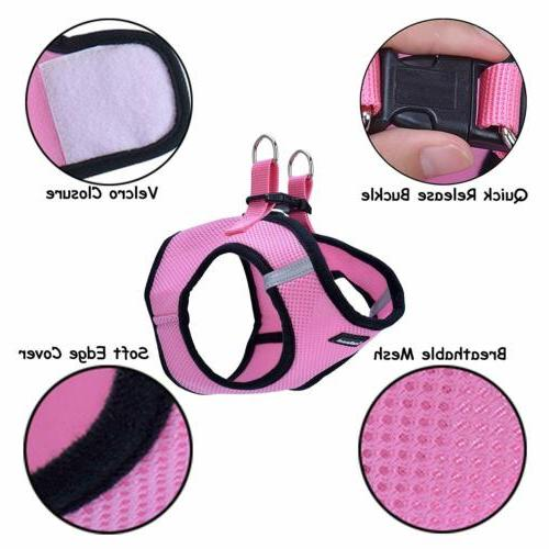 Harness and Mesh Cat Soft Small Strap Collar