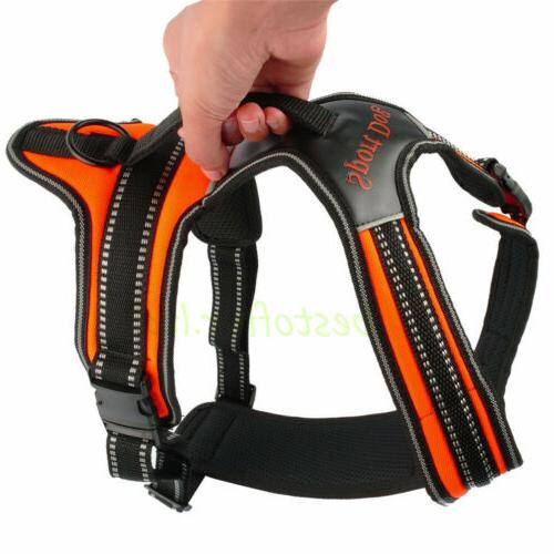 Heavy Duty-Padded Harness XL Small Strap Walk Out Led