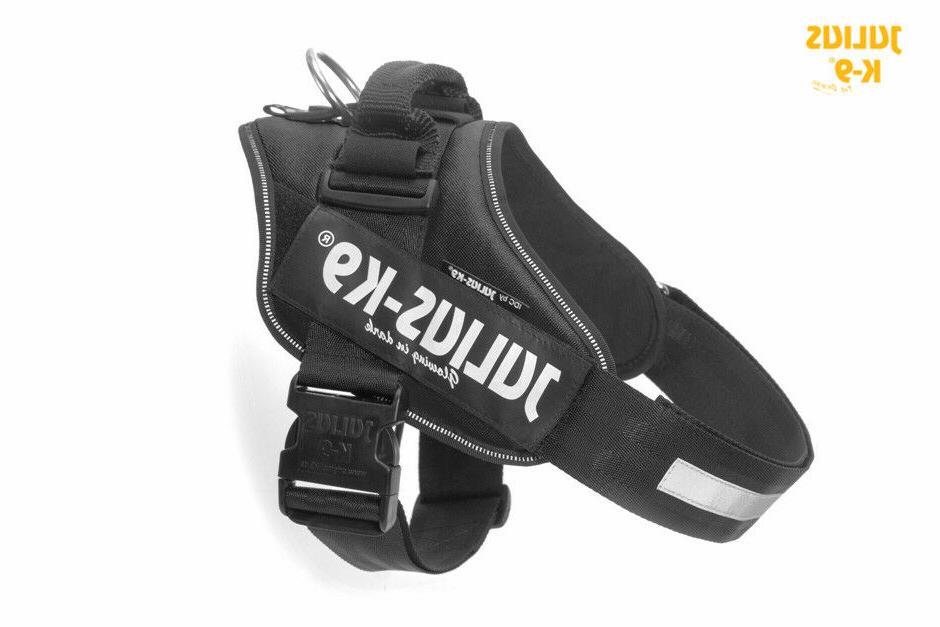 Julius-K9 IDC Powerharness Dog harness - BLACK