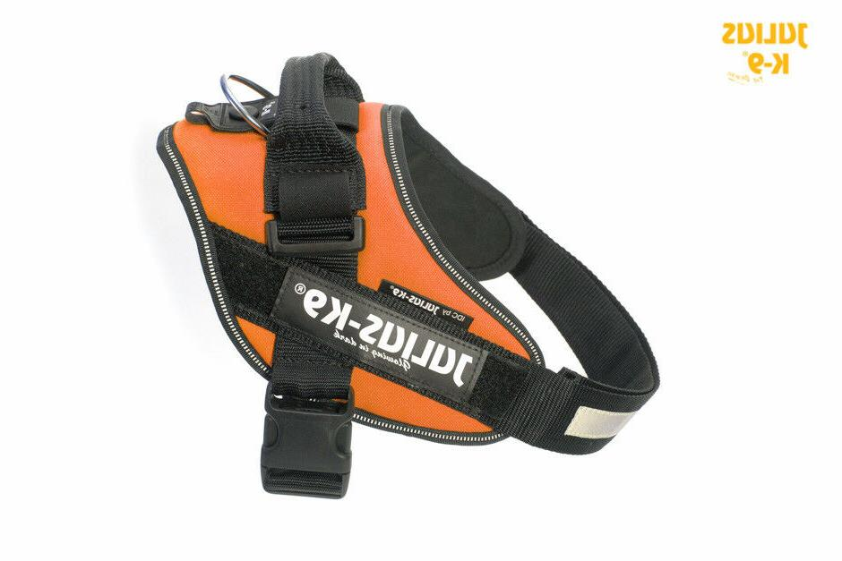 Julius-K9 IDC Powerharness Dog Harness - ORANGE, All Sizes