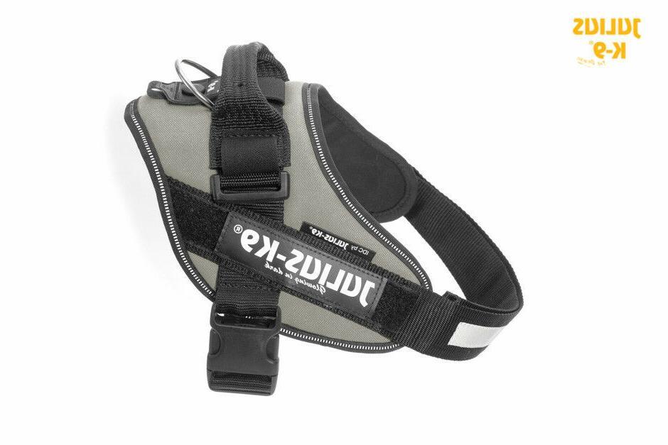 Julius-K9 IDC Powerharness Dog harness - SILVER, All Sizes