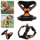 Large Pet Dog Walking Harness Outdoor Exercise Training Ches