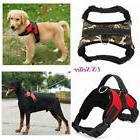 Large Small Dog Harness Pet Walk Out Hand Strap Vest Collar