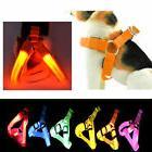 LED Dog Harness Visible LED Light Harness Used for Safe Walk