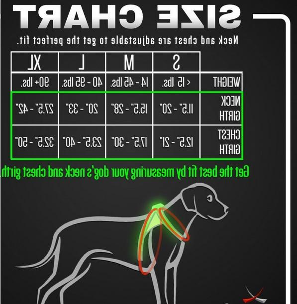 noxgear LightHound Revolutionary and Reflective Dogs