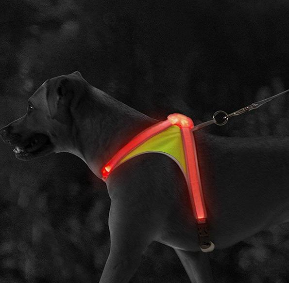 and Reflective for Dogs