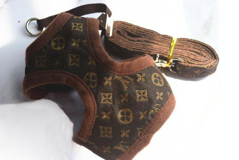 LV GG Set Small Pet Out