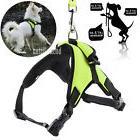 No Pull Adjustable Dog Vest Harness Leash Collar Set for Sma