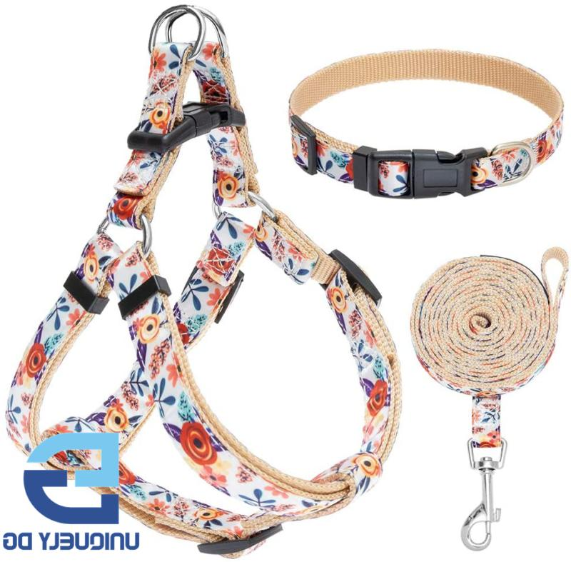 EXPAWLORER No Pull Dog Harness and Leash Set with Collar - H