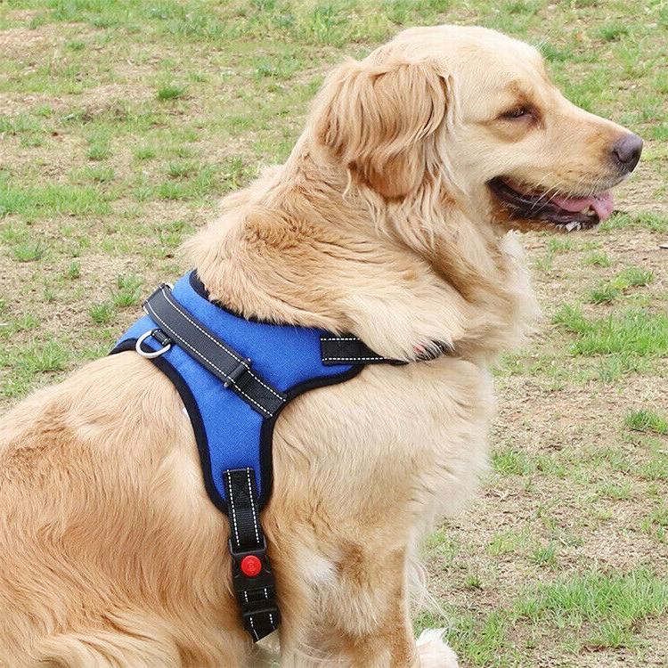 No Pull Dog Pet Vest Harness Adjustable, Reflective Quality, M
