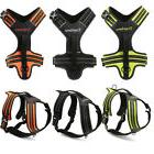 Truelove No-Pull Strong Adjustable Dog Harness Reflective XS