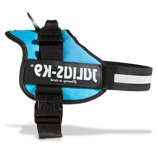 Julius K9 Original Powerharness Dog Harness aquamarine NEW