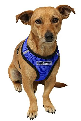 OxGord Pet for Dog Cat Easy Small, Blue