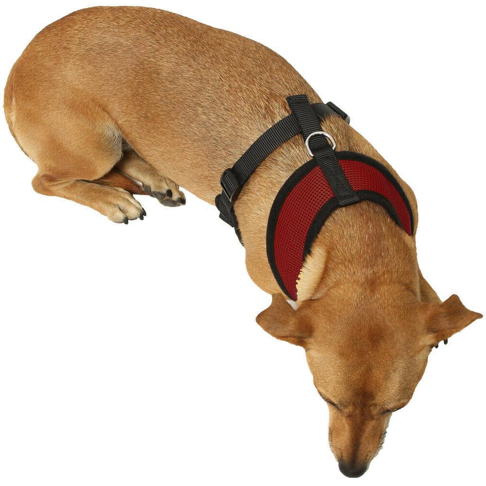 Pet Control Dog & Cat Mesh Collar Safety Strap Vest