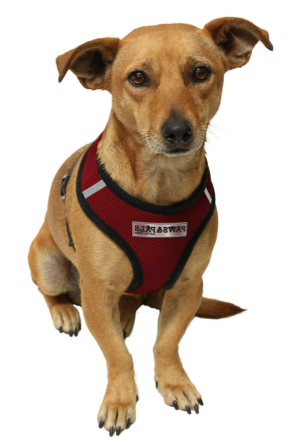 pet control harness for cat dog soft