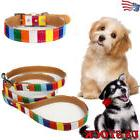 Pet Dog Harne Leash Pet Supplies Colourful Head Collar Stand
