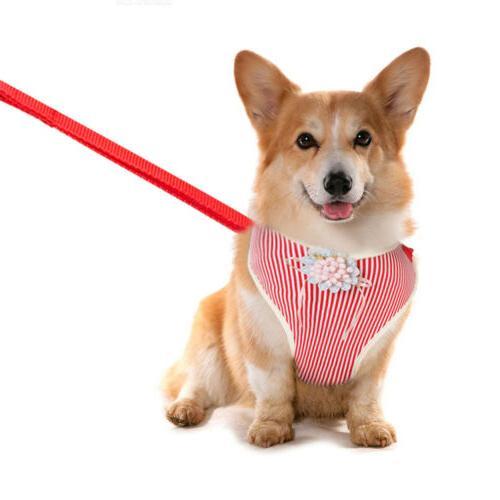 Pet Vest Adjustable Puppy Leash For New